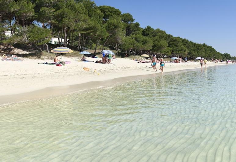 Hotel Ivory Playa Sports & Spa, Alcudia, Ranta