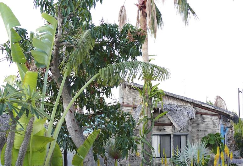 La Bohemia Hotel Pequeno, Todos Santos, Zahrada