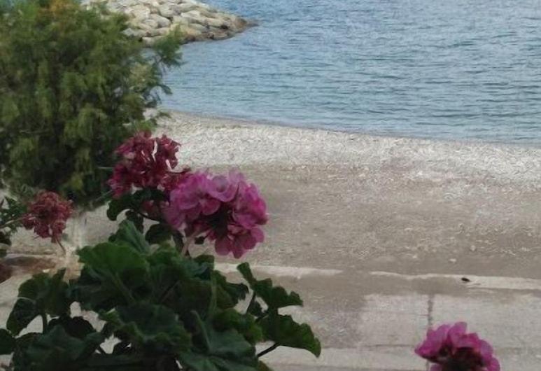 莫里斯公寓酒店, 西曼尼, 海灘