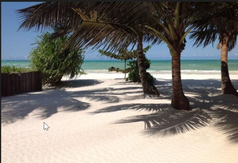 بونغوي باي ريزورت, بونجوي, الشاطئ