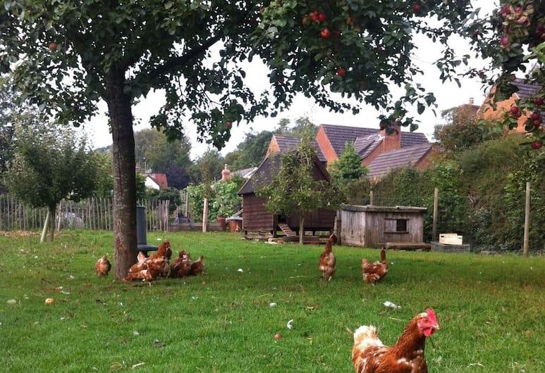 Cider Cottages, Ringwood, Property Grounds
