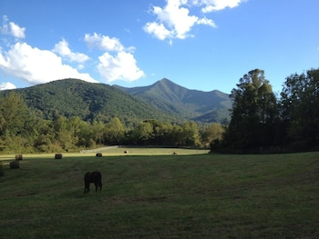 Picture of Pisgah View Ranch in Candler
