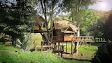 Foto van Rabeang Pasak Treehouse Resort in Doi Saket