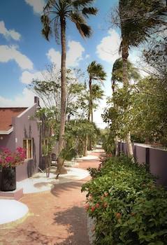 Picture of Cadushi Apartments in Oranjestad