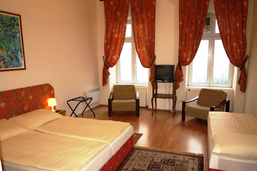Studio (Apartment) - Living Area