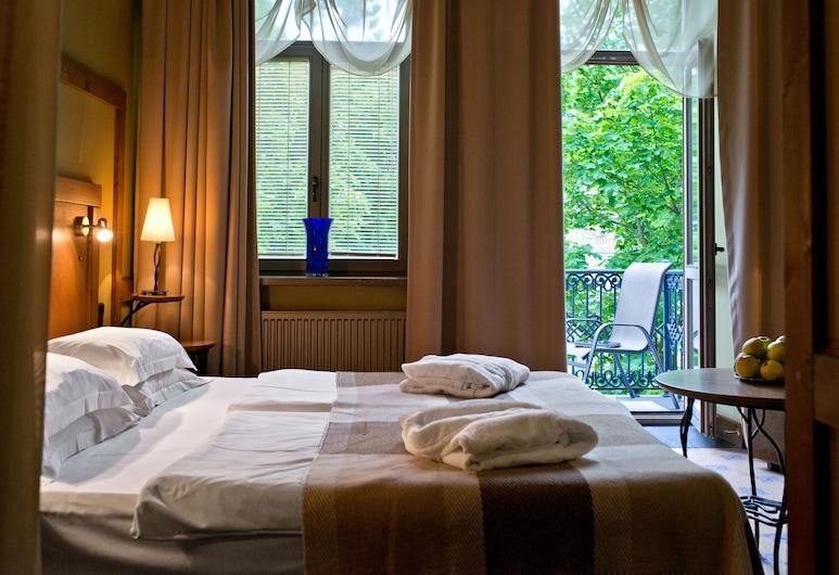 德魯斯基寧凱中心最佳波羅的海飯店, 德魯斯金卡, 標準雙人或雙床房, 客房