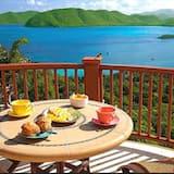 Luxury Penthouse - Balcony