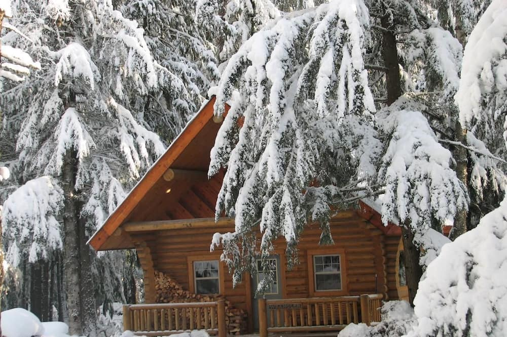 Cabin, Multiple Beds- Pet Friendly - Guest Room