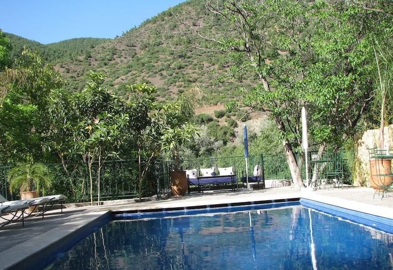 Chez Larbi Ourika, สติฟัดมา, สระว่ายน้ำกลางแจ้ง