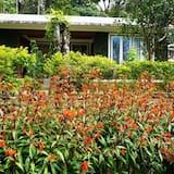 Deluxe Σουίτα, Θέα στον Κήπο - Θέα στον κήπο