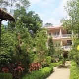 Deluxe Double or Twin Room, Private Bathroom, Garden View  - Garden View