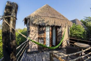 Foto del MangleX Eco Hotel Tulum en Tulum