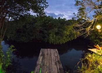 Foto van MangleX Cenote Eco Hotel in Tulum