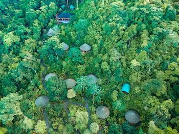 Bild vom Luna Lodge in Puerto Jimenez