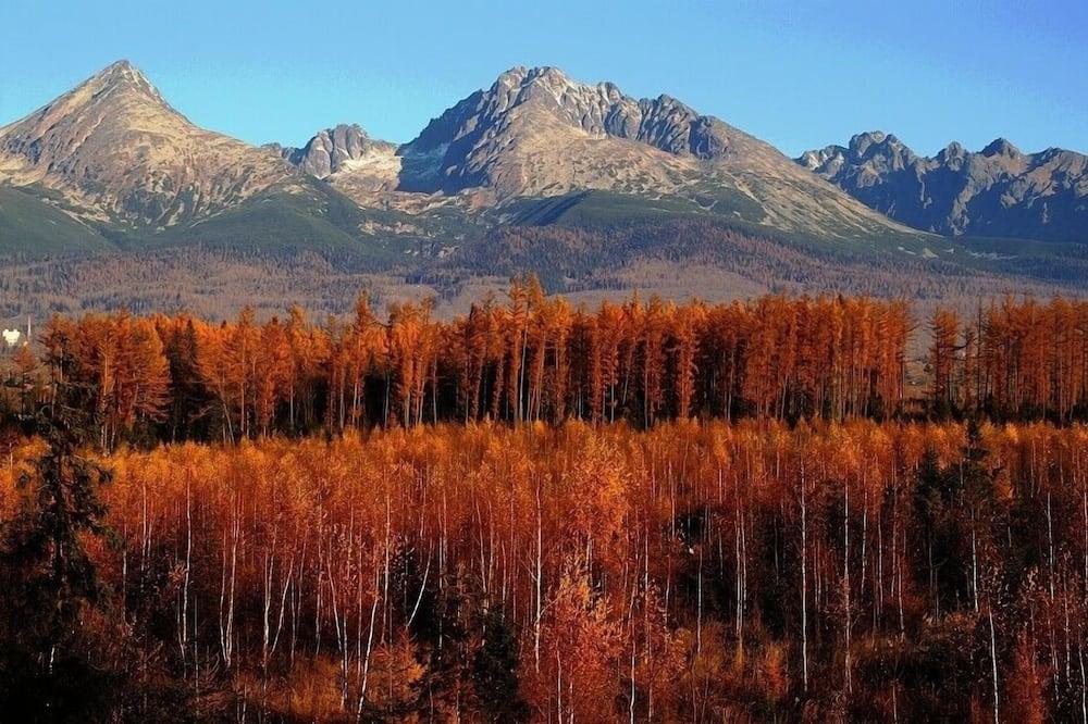 Standard dubbelrum - utsikt mot dalen - Bergsutsikt