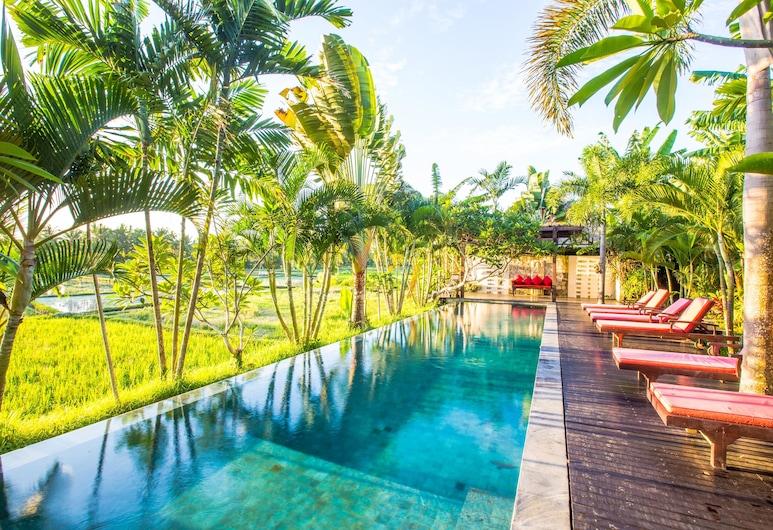 Bali Harmony Villas, Ubud, Outdoor Pool