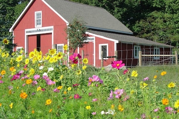 Picture of Bryn Meadow Farm and B&B in Charlotte