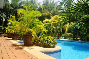 Picture of Golden Palm Resort in Panglao Island
