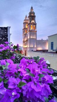 Foto del Hotel Maya Ah Kim Pech en Campeche