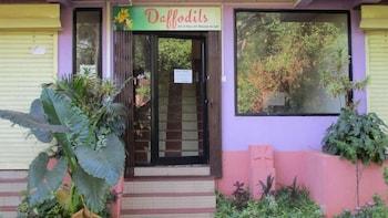 ภาพ Daffodils Guest House ใน คาลังกูท