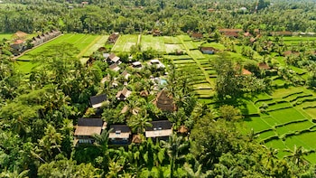 Picture of Blue Karma Ubud in Ubud