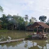 Pokoj Basic s dvojlůžkem nebo dvěma jednolůžky - Výhled na jezero