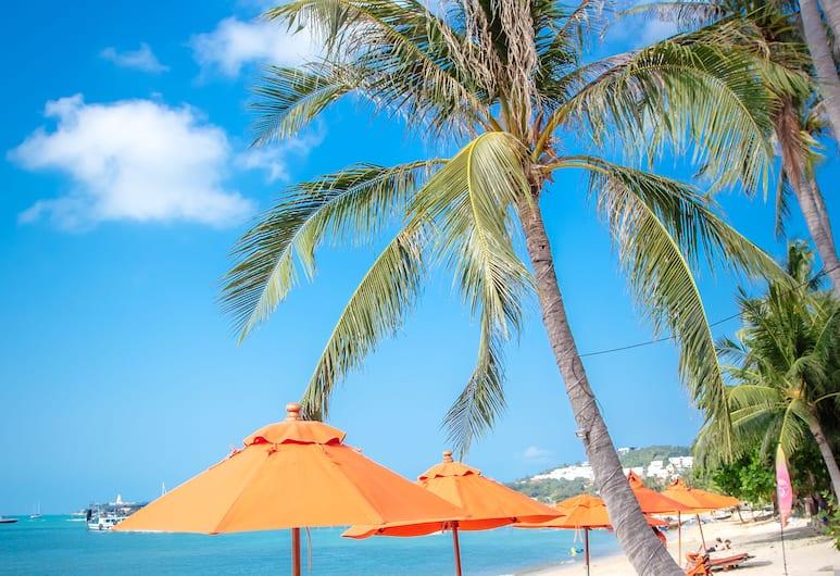 秘密花園海灘渡假村, 蘇梅島, 酒店景觀