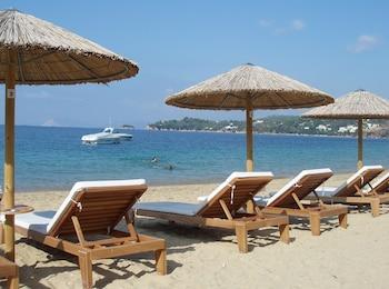 Image de Skiathos Holidays à Skiathos