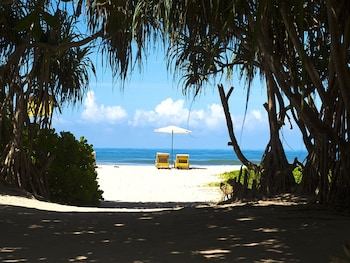 Picture of Palm Beach Inn and Sea Shells Cabanas in Bentota