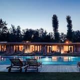 Superior Studio, Pool View - Outdoor Pool