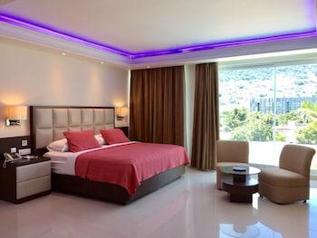 在阿卡普尔科(及周边地区)的妮洛酒店照片