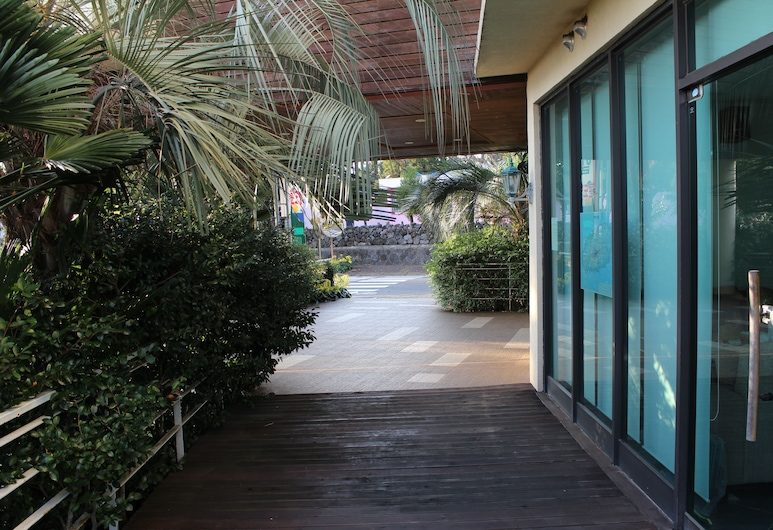棕櫚山別墅旅館, 西歸浦, 飯店入口