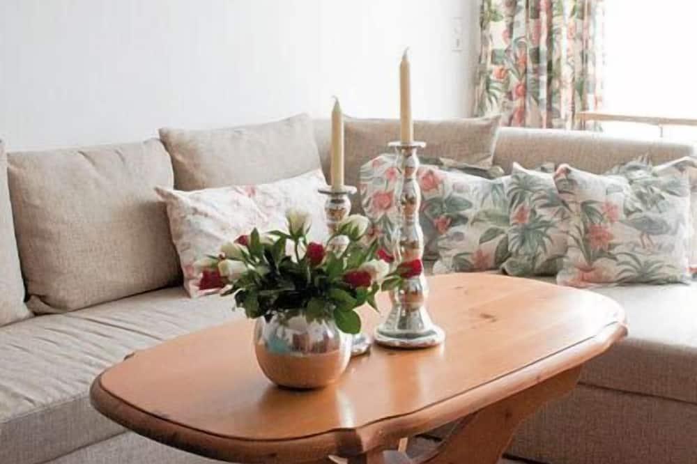 Apartment (100 qm) - Living Room