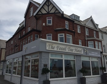 Picture of The Fossil Tree Hotel in Blackpool