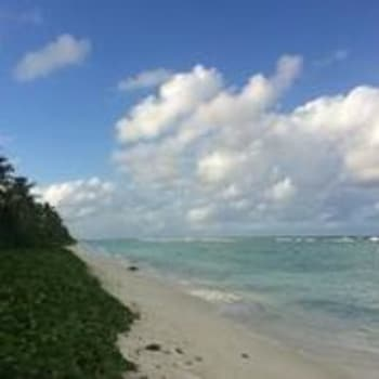 Picture of Pine Lodge in Hulhumalé