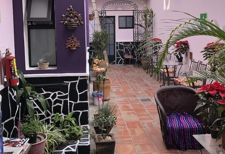 Olga Querida Hostal - Hostel, Guadalajara, Innenhof
