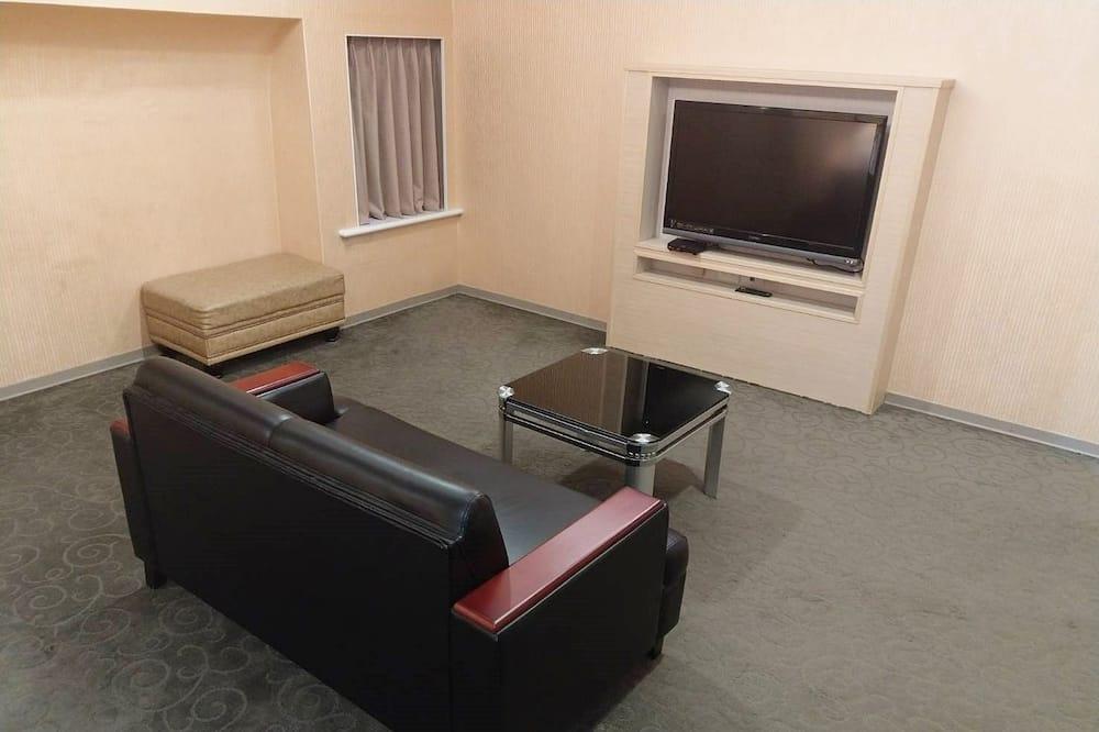 Deluxe Double Room, 1 Bedroom, No Windows (DS) - Living Area
