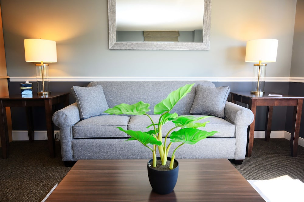 Business Suite, 2 Bedrooms - Living Area