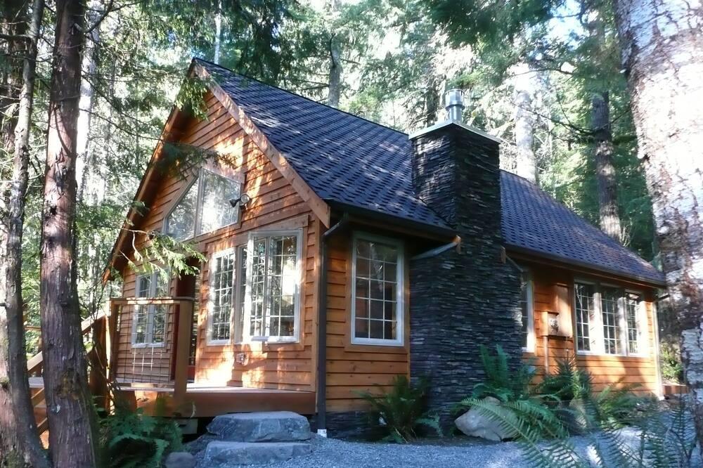 Muir Cabin - Oda