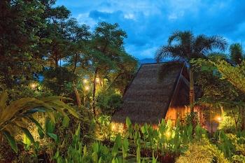 Pai bölgesindeki PuraVida Pai Resort resmi