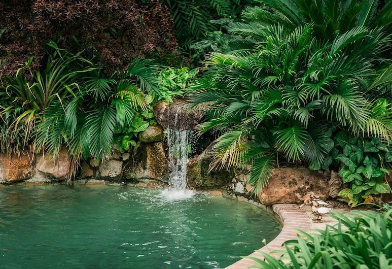 York Lodge, Хараре, Бассейн с водопадом