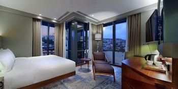 Hình ảnh DoubleTree by Hilton Hotel Istanbul - Piyalepasa tại Istanbul