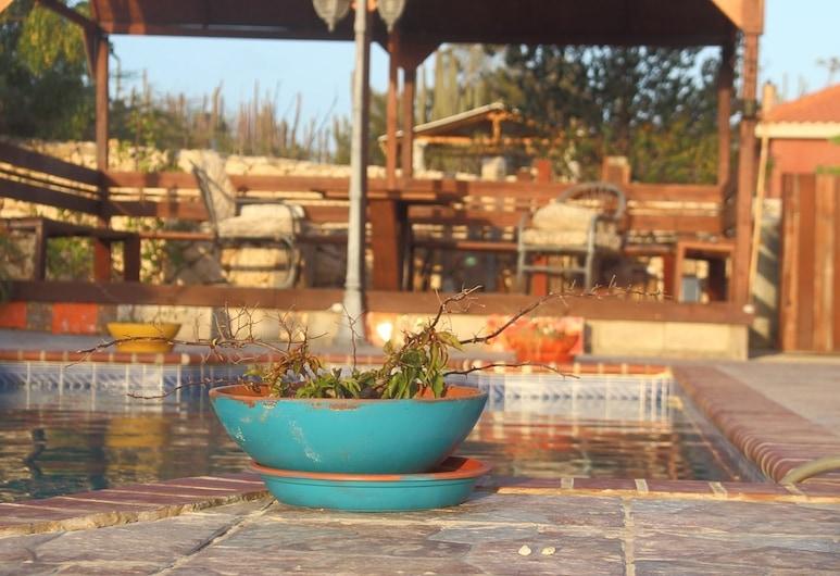 Fuego Mio Bed & Breakfast, Santa Cruz, Outdoor Pool