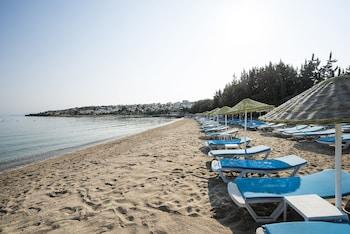 Çeşme bölgesindeki Altin Yunus Apart Beach Plus resmi