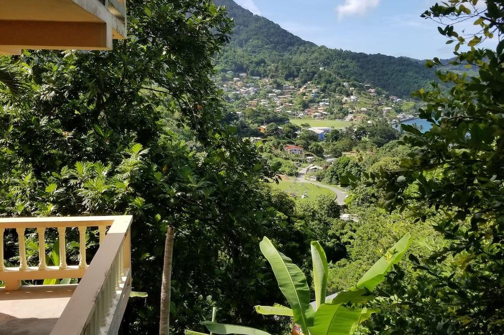 Студія-люкс - З видом на гори