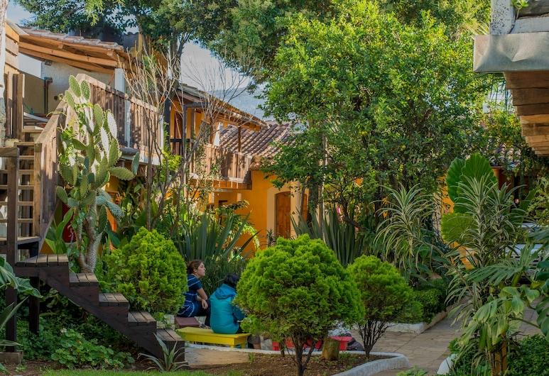 Rossco Backpackers Hostel, San Cristóbal de las Casas, Garten