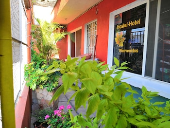 Picture of Hostal Maple in Queretaro