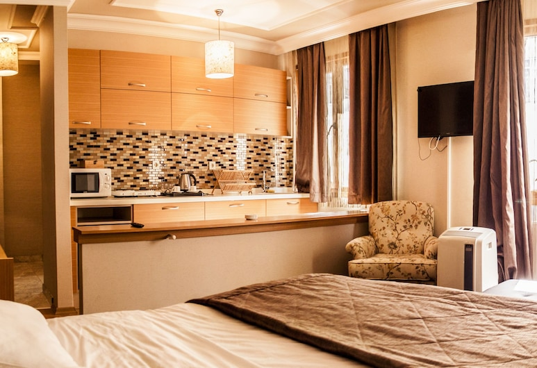 Cihangir Ceylan Suite Hotel, Κωνσταντινούπολη, Δίκλινο Δωμάτιο (Double), Θέα στην Πόλη, Δωμάτιο