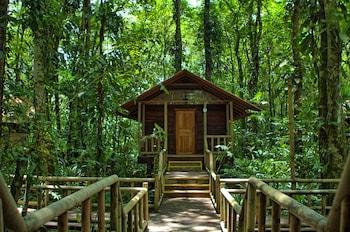 Picture of Evergreen Lodge in Tortuguero