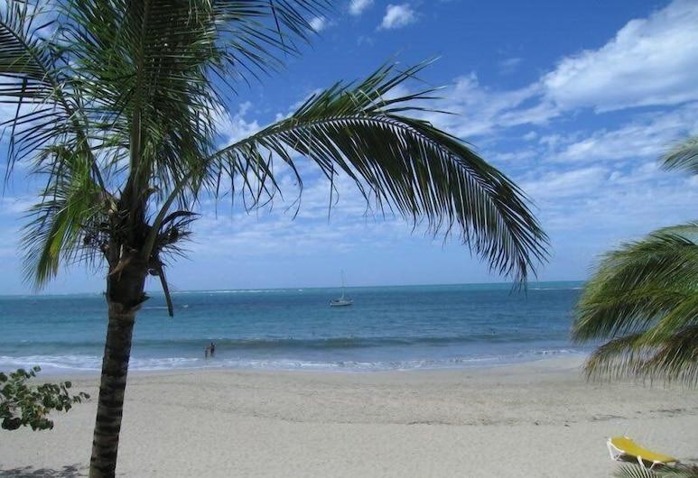 بيتش باليس كباريه, كاباريتي, الشاطئ